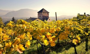 Gourmet Hotels in Italy to Savor Fall Flavors