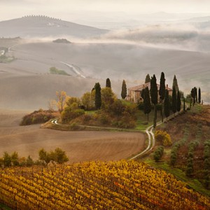 Why a Vineyard in Tuscany is Now a Must-Have for the Super-Rich
