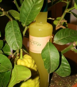 From Lemons to Limoncello di Sorrento